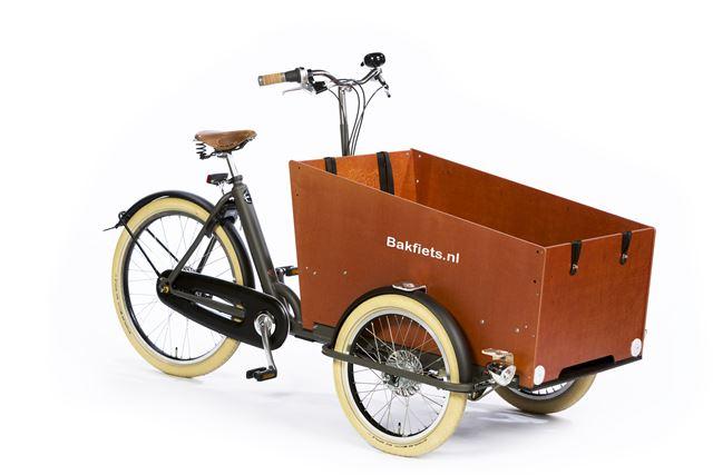 Bakfiets Cargo Trike